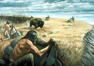 Chasse aux bisons, diriger un troupeau vers une falaise
