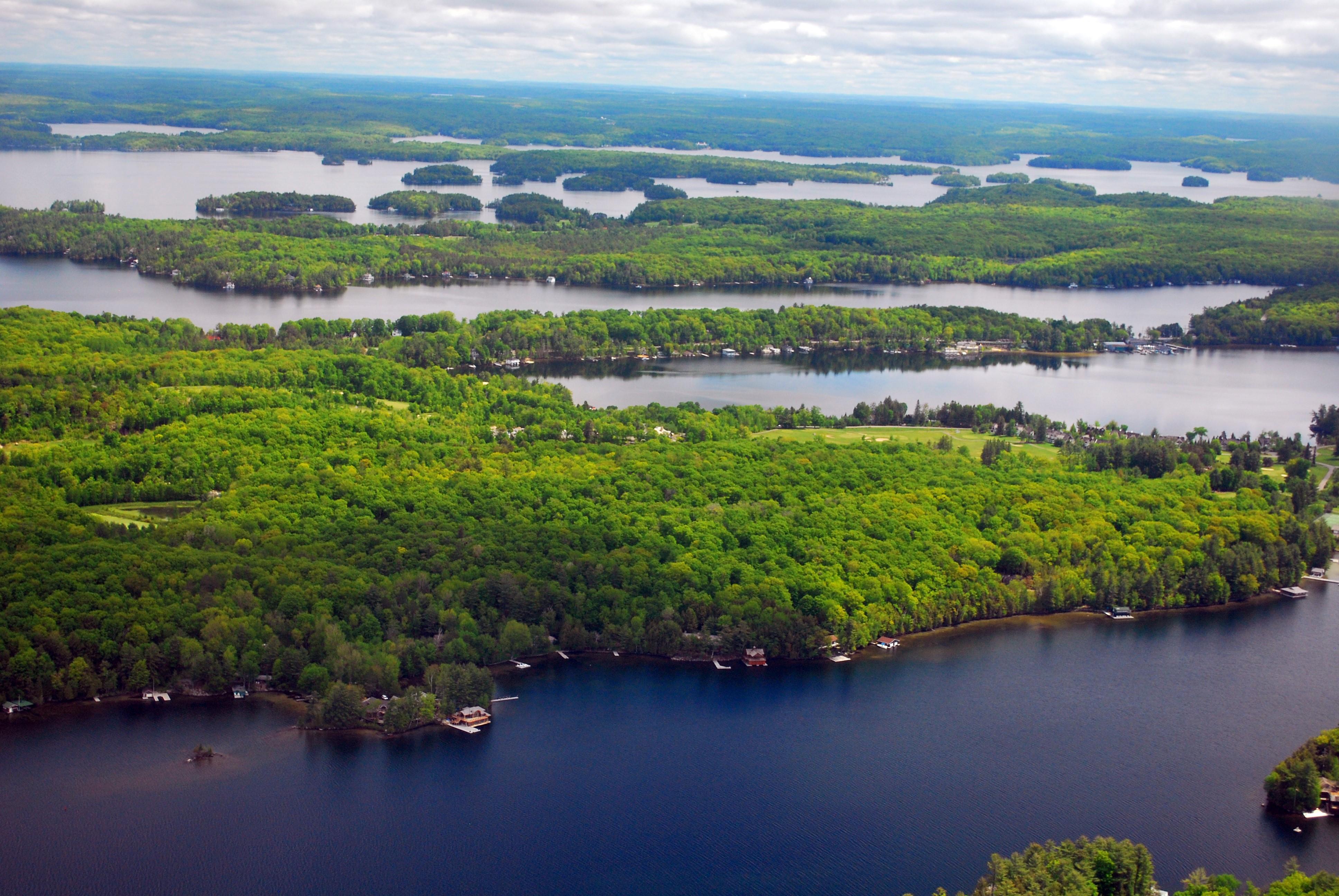 Vue aérienne des lacs et des îles à Muskoka