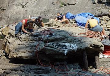 Excavation de dinosaures