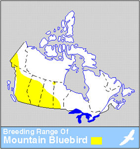 Répartition du merle-bleu azuré