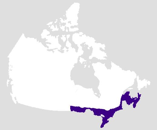 Zones culturelles autochtones au Canada : les forêts de l'Est (ou le Nord-est)