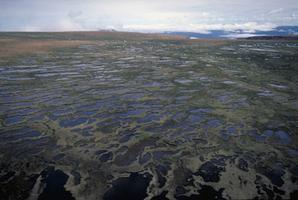 Plateau Tablelands, Gros-Morne