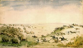Métis Chasing the Buffalo Herd