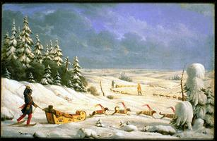 \u00ab Winter Travelling in Dogsled \u00bb