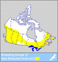 Red-breasted Nuthatch Distribution