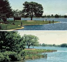 Grenadier Pond Naturalized