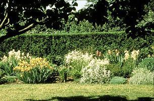 Jardin Heritage