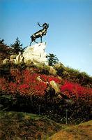 Parc commémoratif de Beaumont-Hamel