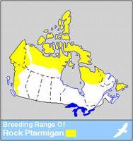 White-tailed Ptarmigan Distribution