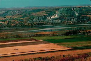 Champs de ferme des basses-terres de la rivi