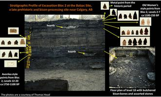 Stratigraphy of the Balzac Site