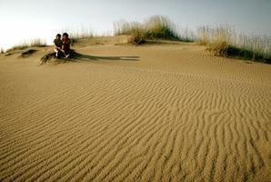 Dunes de sable à proximité du lac Athabasca