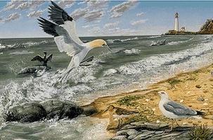 Atlantic Marine Ecosystem (Detail 3)
