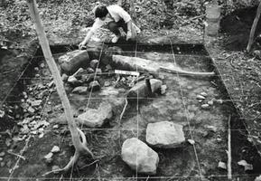 Pointe-du-Buisson, Excavation