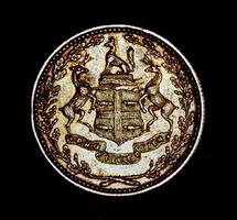 Made Beaver Coin