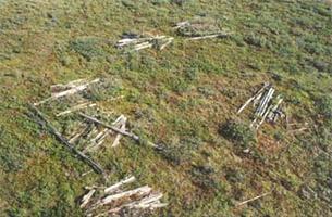 Kitigaaryuit Graves