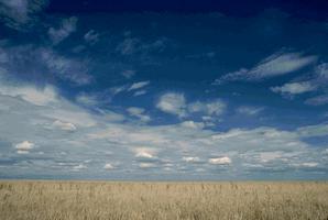 Prairie (Alberta)
