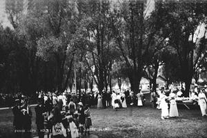 Gathering in High Park