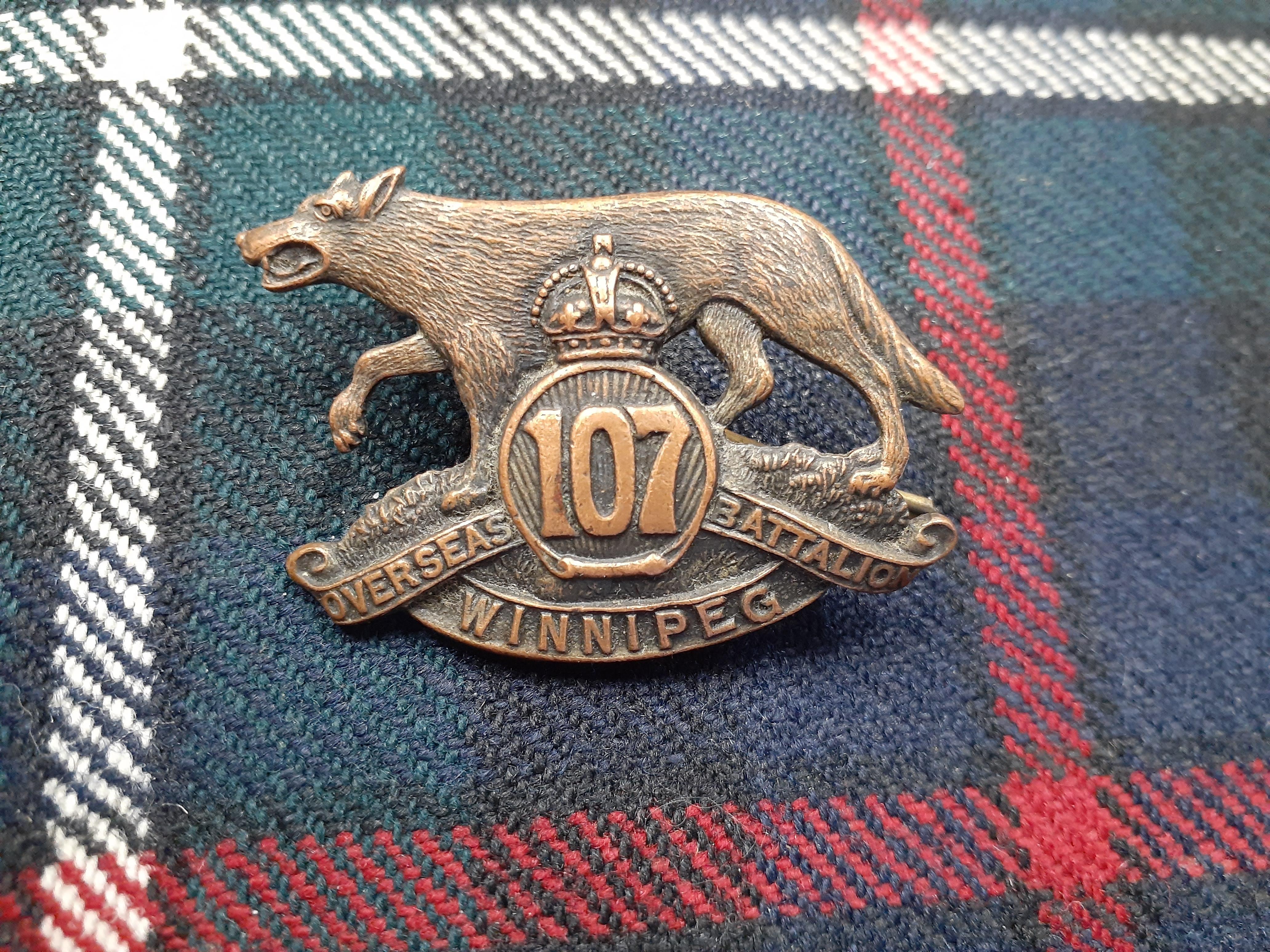 107th cap badge