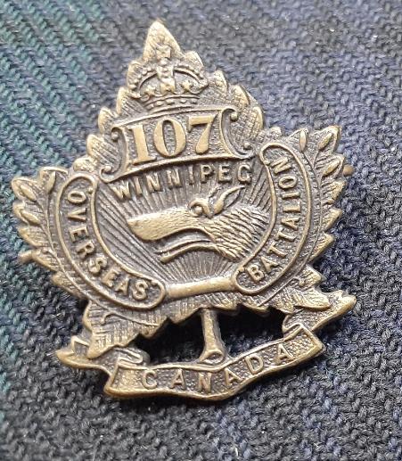 107th collar badge