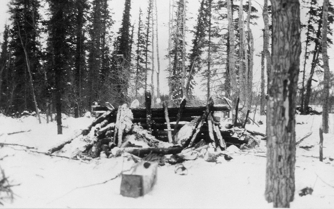 The Mad Trapper's Cabin