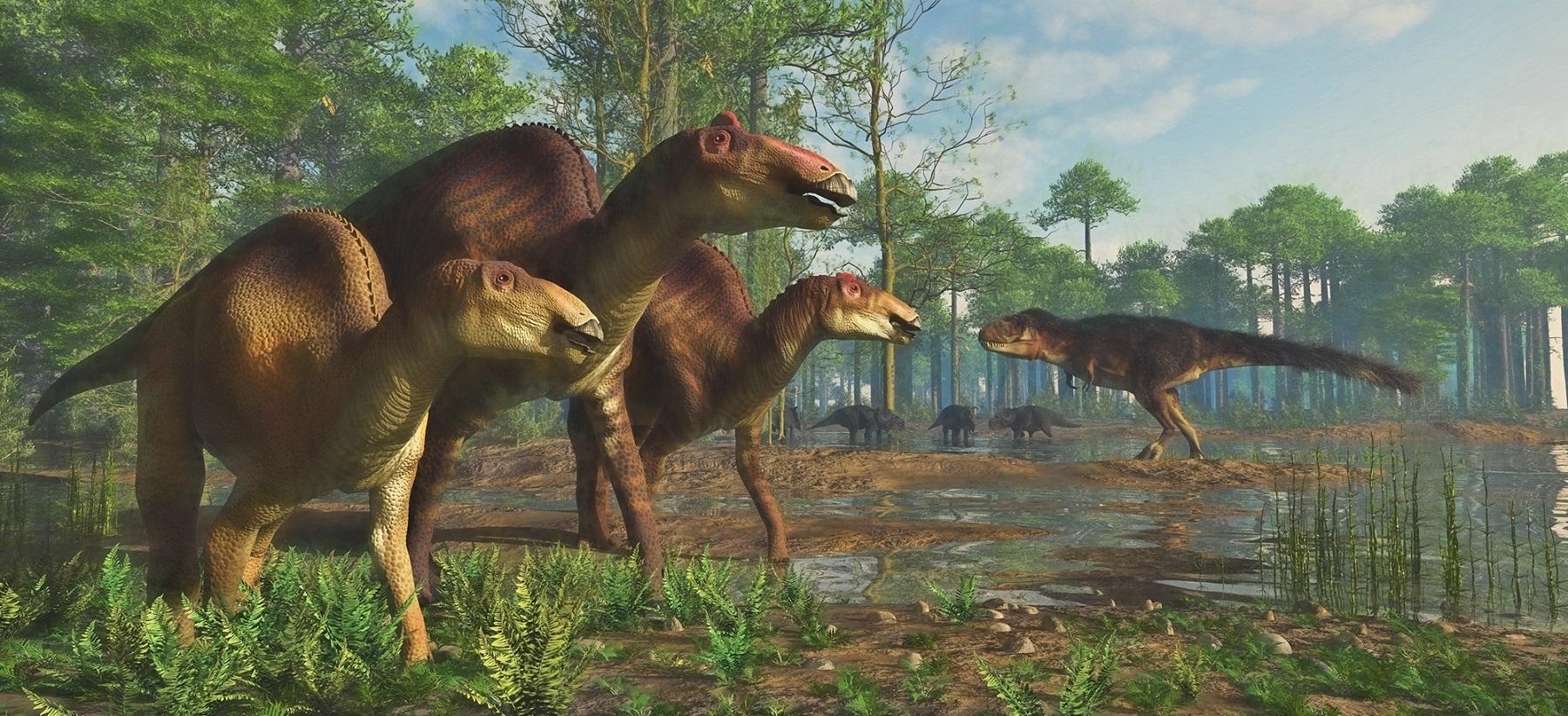 Edmontosaurus Regalis Herd