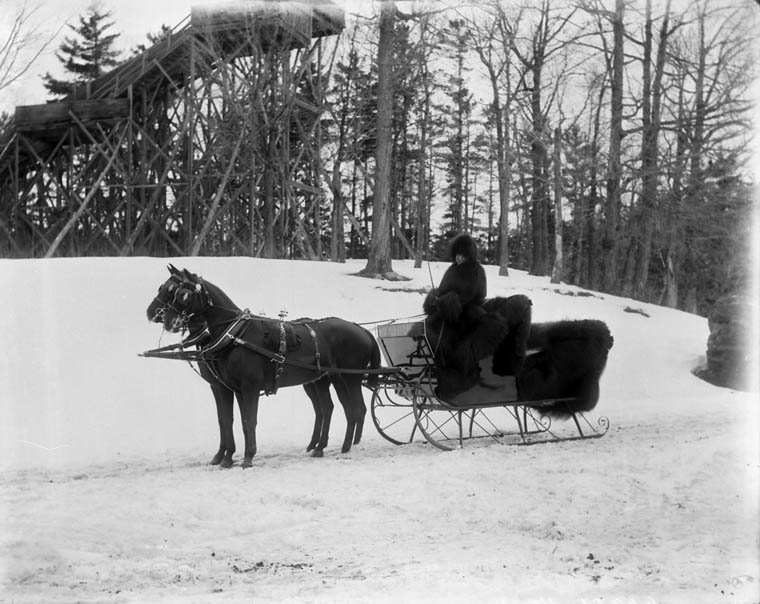 Sleigh and Horses