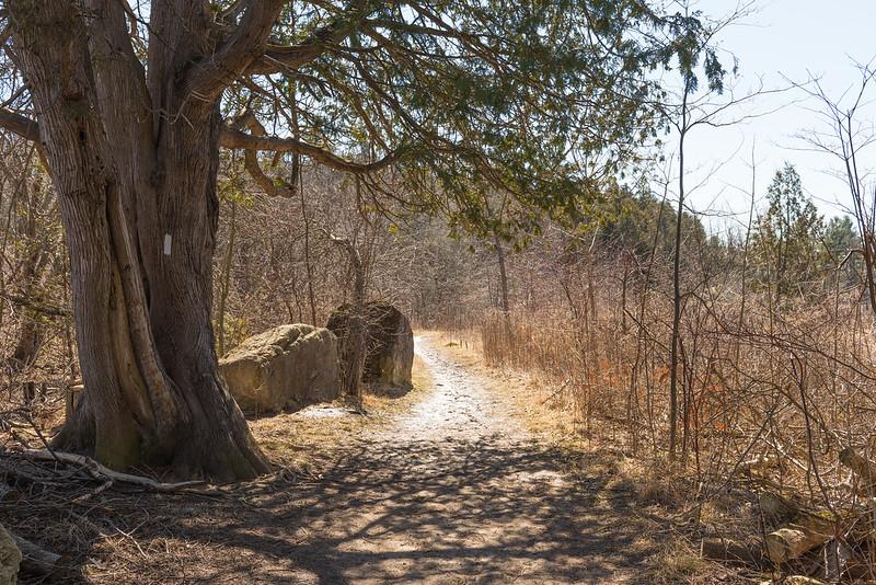 Le Bruce Trail