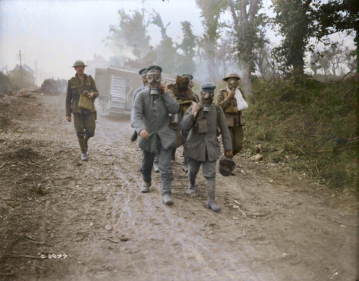 (Bataille d'Amiens) Avancée des chars. Des prisonniers ramènent des blessés portant des masques à gaz, août 1918.